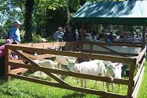 Sen o Jizerských horách aneb Smržovský jarmark a Den Jizerskohorských jídel