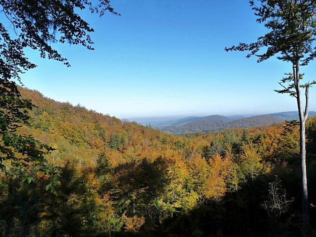 Podzim v Jizerských horách.