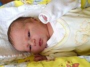 Zoe Krajňáková se narodila Katarině a Pavlovi Krajňákovým z Liberce 26.8.2015. Měřila 51 cm a 3300 gramů.