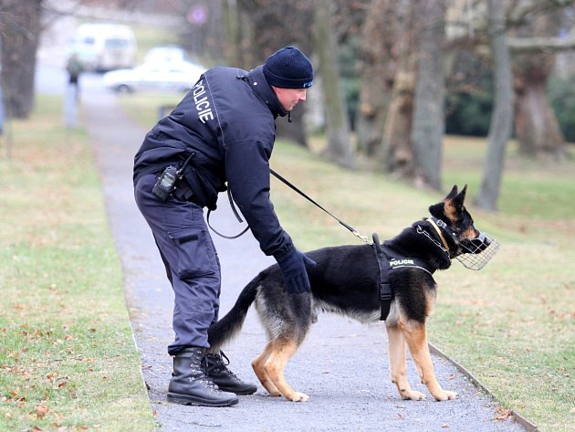 Policejní psovod - ilustrační snímek