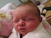 Vendulka Rosůlková se narodila Daně Bednářové a Jaroslavovi Rosůlkovi z Jablonce nad Nisou 22. 10. 2016. Měřila 47 cm a vážila 3080 g
