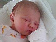 KLÁRKA TEJMLOVÁ se narodila 31.5.2016 Michaele a Ondřejovi Tejmlovým z Jablonce. Vážila 3040 g a měřila 49 cm.