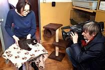Marta Kubišová natáčela s televizním štábem v lučanském útulku Dášenka pořad Chcete mě.