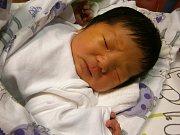 Xing Mei se narodil Sun Bo Bo a Xing Mei z Jablonce nad Nisou dne 25.1.2016. Vážil 3800 g a měřil 49 cm.