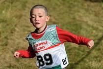 V Josefově Dole proběhl v sobotu tradiční přespolní běh. Na snímku doběh vítěze nejmladší kategorie chlapců  ročníku narození 2001 a ml. Jiřího Németha z Jiskry Josefův Důl.