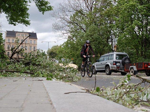 Padlý strom v ulici Mostecká v Jablonci nad Nisou