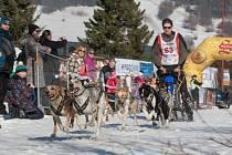 V městysu Zásada v Jizerských horách, se o víkendu konalo  Mistrovství České republiky v psích spřeženích.