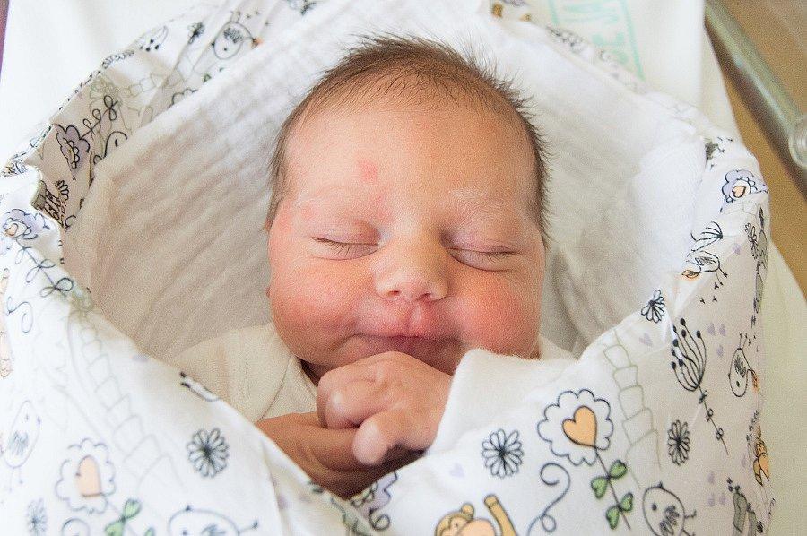 SOFIE PŘIBYLOVÁ se narodila v pondělí 18. prosince v jablonecké porodnici mamince Lucii Přibylové z Jiříkova. Měřila 49 cm a vážila 3,79 kg.