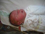 Rozálie Stejskalová  Narodila se 18. ledna v jablonecké porodnici  mamince Zuzaně Stejskalové z Dolní Sytové.  Vážila 3,35 kg a měřila 49 cm.