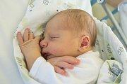 VILÉM FREIWILLIG se narodil v pondělí 11. prosince v jablonecké porodnici mamince Blance Daníčkové z Liberce.  Měřil 50 cm a vážil 4,00 kg.