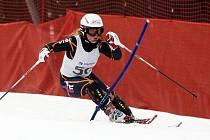 Nedělní závod ve slalomu na Tanvaldském Špičáku v rámci FIS Českého poháru v Albrechticích.