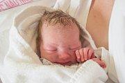 ZUZANA PACLTOVÁ se narodila ve čtvrtek 3. května v jablonecké porodnici mamince Janě Pacltové z Liberce. Měřila 48 cm a vážila 3,20 kg.