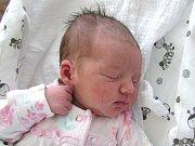 KATEŘINA DVOŘÁKOVÁ se narodila Michaele Klinkové a Janovi Dvořákovi z Rychnova u Jbc. 6.6.2016. Měřila 53 cm a vážila 3930 g.
