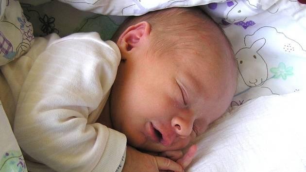 MAREK ŠRŮMA se narodil Michaele a Martinovi Šrůmovým z Liberce 31.7.2016. Měřil 50 cm a vážil 3370 g.