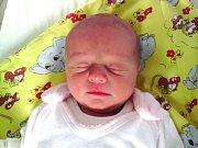 Lucie Vlková se narodila 12. 4. 2015 Monice a Miroslavu Vlkovým z Liberce Rochlic. Vážila 2650 g a měřila 46 cm.