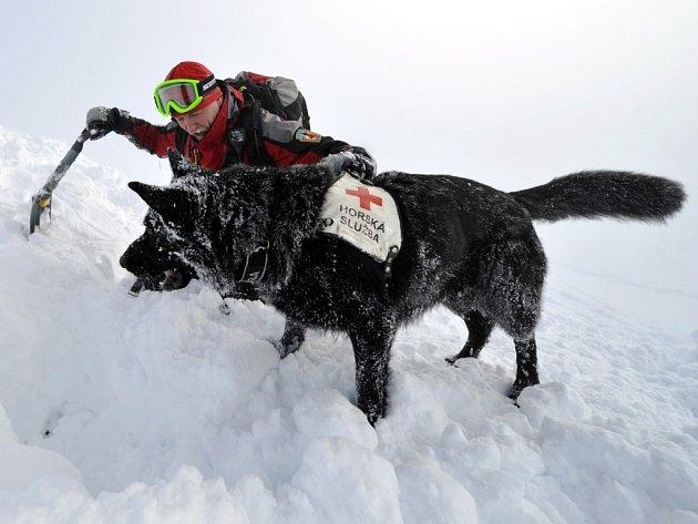 Aleš Rydval z Horské služby Jizerské hory s Atilou při cvičení na hřebenech Krkonoš.