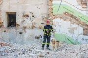 Psovodi cvičili v areálu bývalé továrny v Plavech vyhledávání osob uvězněných v sutích.
