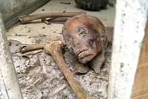 UŠETŘENO ÚTOKŮ NEZŮSTALO ANI MUZEUM EGYPTSKÝCH PAMÁTEK V KÁHIŘE. Kdo navštívil Egypt a dostal se do Káhiry rozhodně neopomněl zajít do muzea. Tato bašta nedotknutelnosti ale padla po útoku o uplynulém víkendu.