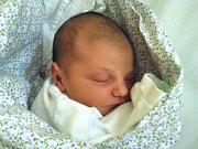 MICHAELA FIALOVÁ se narodila Renátě Hauptmannové a Petrovi Fialovi z Kořenova dne 3.1.2017. Měřila 49 cm a vážila 3390 g.