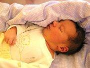 David Šťastný se narodil Monice a Břetislavovi Šťastným z Liberce 23. 3. 2016. Měřil 50 cm vážil 3480 g.
