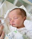 Lilien Paldusová Narodila se 8. října v jablonecké porodnici mamince Veronice Čečelské z Mnichova Hradiště. Vážila 3,275 kg a měřila 50 cm.
