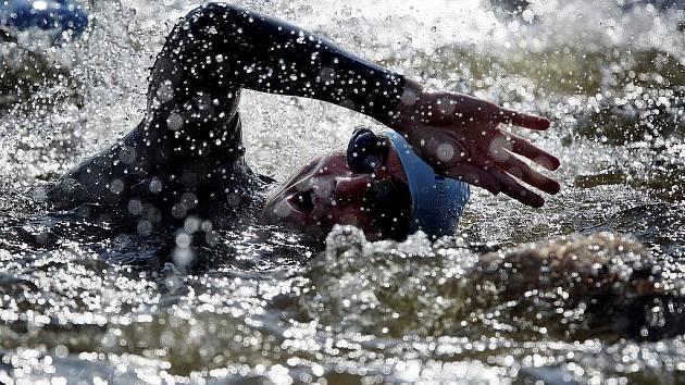Plavání. Ilustrační snímek.
