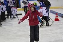 Na zimním stadionu se pravidelně koná i akce s názvem Den hokeje.