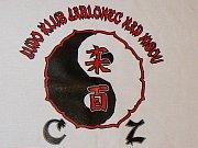 Judoklub Jablonec nad Nisou. Ilustrační obrázek.