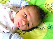 VOJTĚCH BERAN se narodil Veronice Janečkové a Milanovi Beranovi z Jablonce 14. 6. 2016. Měřil 50 cm a vážil 3450 g.