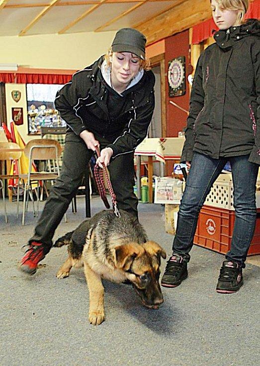"""Na kynologickém cvičišti v Lukášově se učí psi """"slušně"""" chovat"""