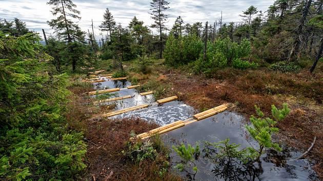 Obnova rašelinišť v Jizerských horách.