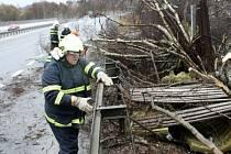V Libereckém kraji  v sobotu dopoledne řádil orkán Emma. Hasiči odstraňovali stromy na silnicích a pomáhali likvidovat škody na domech v liberecké Puškinově ulici.