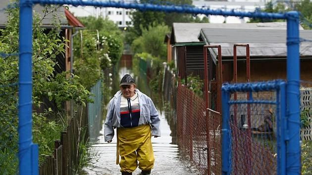 Zahrádkářská kolonie v České Lípě