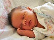 Elena Šauerová se narodila Libuši a Karlovi Šauerovým z Desné 14.6.2015. Měřila 48 cm a vážila 3600 g.