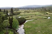 Řeka Jizera na Velké jizerské louce.