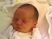 TOMÁŠ VEJDĚLEK se narodil Šárce Kravarové a Fr. Vejdělkovi z Frýdlantu 28.6.2016. Měřil 50 cm a vážil 3630 g.