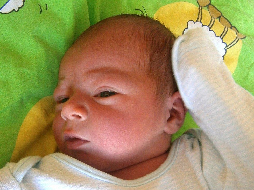 Josef Karel se narodil Lucii Lavírové a Josefovi Karlovi z Jablonce nad Nisou dne 4.11.2015. Měřil 49 cm a vážil 3500 g.