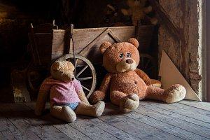 Výstava plyšových medvědů probíhá v jabloneckém Muzeu pro radost.