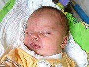 Štěpánka Loudová se narodila Janě Havelkové a Janovi Loudovi z Liberce dne 5.11.2015. Měřila 51 cm a vážila 3750 g.