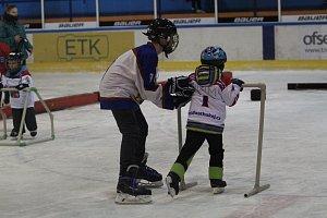 Den hokeje