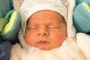 ANTONÍN ŠELIGA se narodil v neděli 17. prosince v jablonecké porodnici mamince Blance Šeligové z Žamberka. Měřil 49 cm a vážil 3,05 kg.
