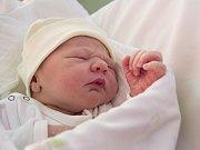 Amálka Plátková se narodila Ireně a Leošovi Plátkovým. Měřila 50 centimetrů a vážila 3 510 gramů.