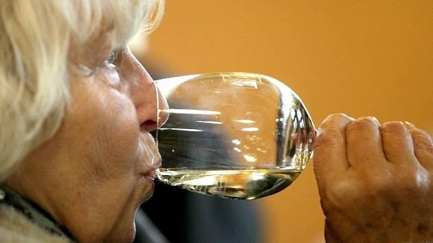 Ochutnávka Svatomartinského vína v jabloneckém Domě vína.