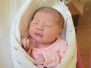 Tereza Havrdová Narodila se 13. prosince v jablonecké porodnici mamince Petře Bastlové z Hodkovic nad Mohelkou. Vážila 2,95 kg a měřila 48 cm.