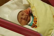 Novorozeňata 2009. Eliška Poláková se stala prvním miminkem narozeným v roce 2009 v Libereckém kraji.