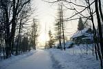Zimní romantika na procházce