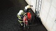Českolipští hasiči zachránili nutrii.