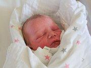 MICHAL KERNER se narodil v pondělí 3. července mamince Kateřině Tomanové z Liberce. Měřil 48 cm a vážil 2,80 kg.