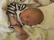 ADAM BERNAT se narodil v pondělí 23. října mamince Jaroslavě Bernatové z Turnova.  Měřil 46 cm a vážil 2,80 kg.
