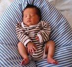 Jakub Rusin se narodil Jitce Schubert Jágrové a Lubošovi Rusinovi z Horní Proseče 1. 11. 2014. Vážil 2700 g a měřil 46 cm.